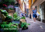 Gamla Stan Flower Alley