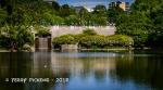 Lake at Frogner Park