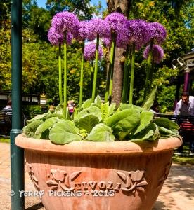 Tivoli Gardens-8