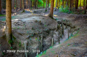 WWI Trenches