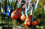 Dory, Nemo and Dad