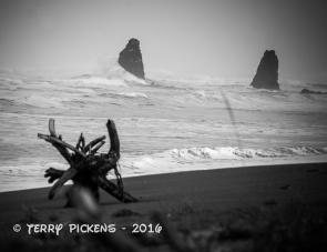 The seashore at Orick