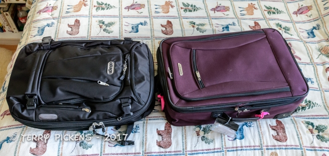 Backpack (left) roller bag (right) pick one for the trip.