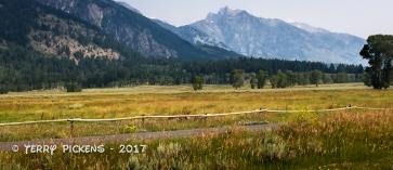 Teton National Park along Moose Wilson Road