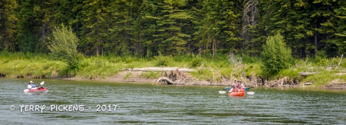 Kayakers on the Snake River
