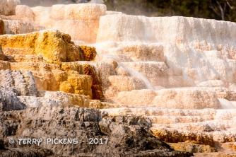 Yellowstone Day 4a-11