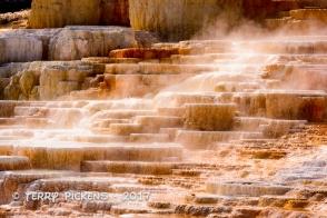 Yellowstone Day 4a-15
