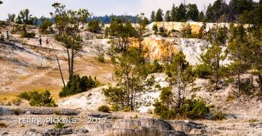 Yellowstone Day 4a-16
