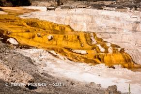 Yellowstone Day 4a-5