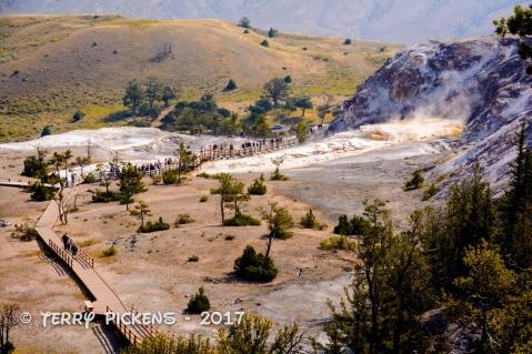 Main overlook Upper Terraces Mammoth Hot Springs