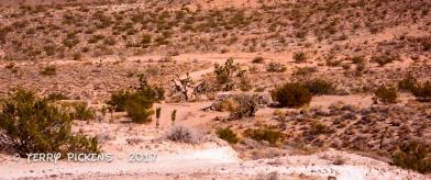 Talc mine site