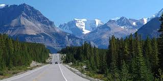 THe Icefields Hwy Photo by others from Google