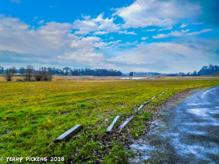 Ridgefield National Wildlife Reserve