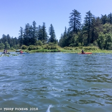 Kayaking Lacamas Lake, WA