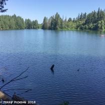 Round Lake, WA
