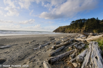 Cape Disappointment Campground Beach
