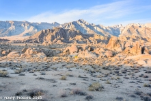 Morning in the desert of Alabama Hills